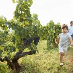 A wine region for the whole family